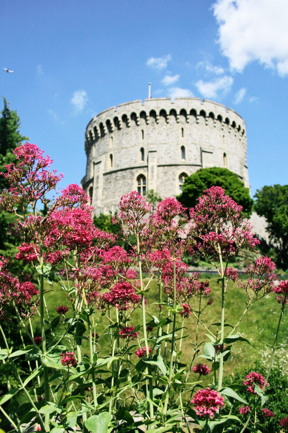 The Round Tower with flowers in bloom