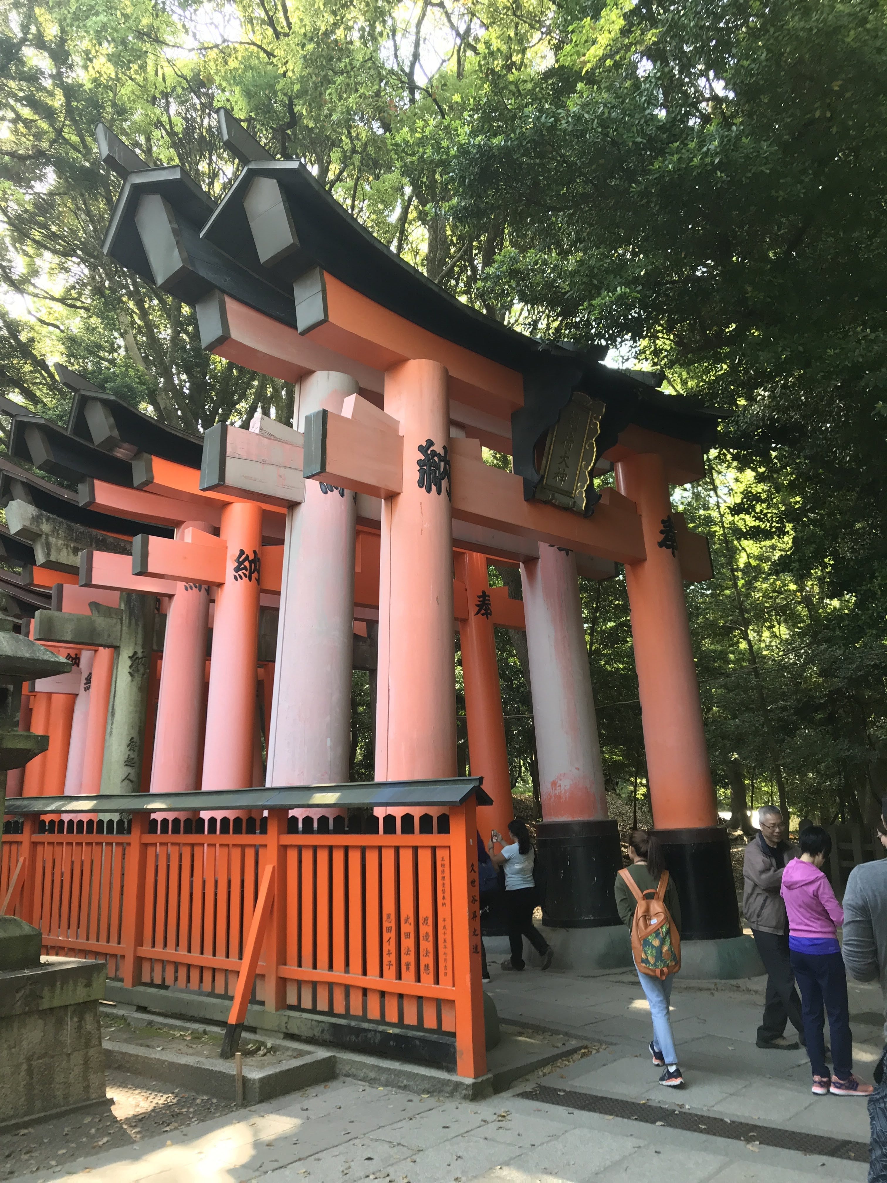 Tall red torii gates at the start of the mountain hike